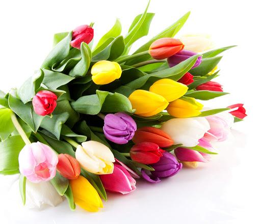 З Міжнародним жіночим днем 8 березня!